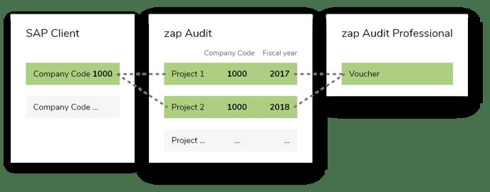 zap-audit-professional-voucher